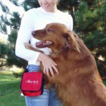 Dog waste bags carried on dog park accessory